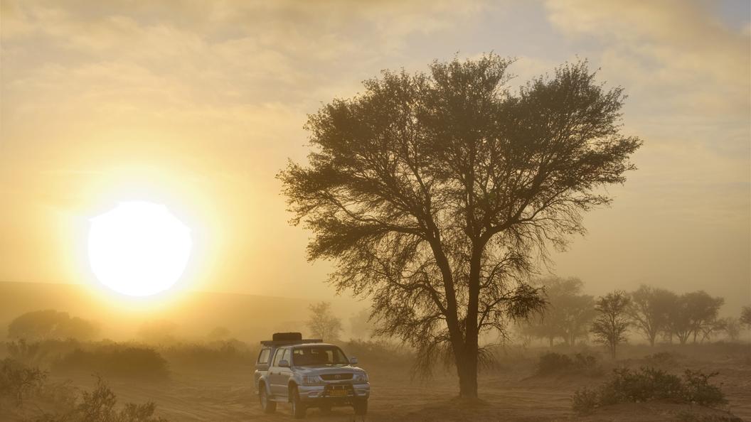 Самыми популярными авто у боевиков ИГИЛ оказались внедорожники Toyota