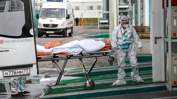Статистика по коронавирусу в Подмосковье на 31 июля: 1592 человека заболело, 1815 выздоровели
