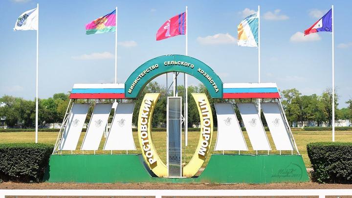 В правительстве подтвердили планы по переносу ипподрома из центра Ростова
