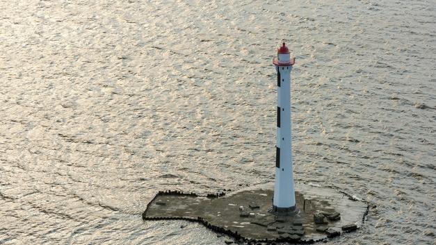 Залив цвета Халка: Петербуржцы постят в соцсетях фото позеленевших балтийских вод