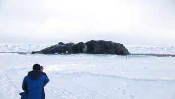 В борьбе с изменчивой Арктикой: Ученые создали новую модель структуры водоемов