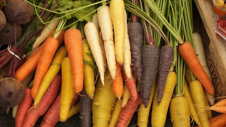 Салаты до инсульта доведут: Учёные предупредили о главной опасности овощной диеты