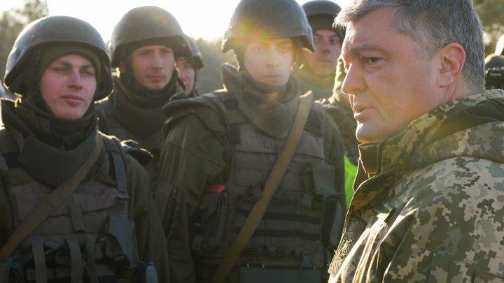 «Киев умнее не умеет»: Пушков объяснил, почему Германия не хочет видеть Украину в НАТО
