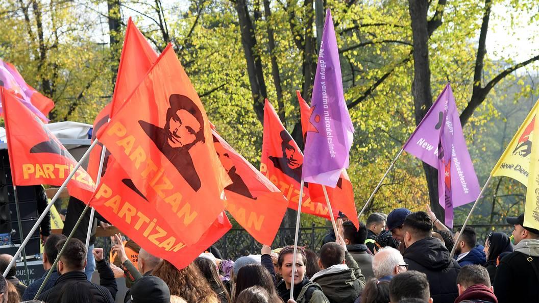 ВГермании при разгоне демонстрации пострадали 15 полицейских