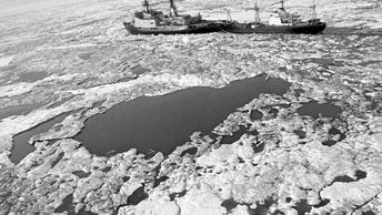 Эксперт объяснил, почему США не удастся отобрать у России Северный морской путь