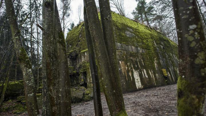 В Волчьем логове Гитлера нашли секретные теплицы