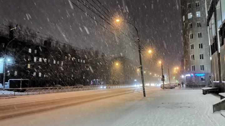 Синоптики обещают аномально снежное начало весны в Новосибирске