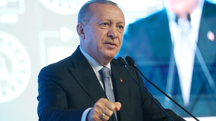 Ты не в той позиции, чтобы диктовать правила: Эрдоган унизил Макрона