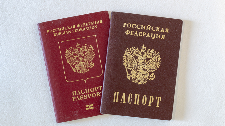 Бьют по паспорту: Граждан России освободили от детей и супругов