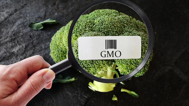 Маркировка ГМО: Ставка на процент?