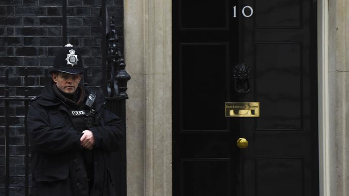 Британские СМИ: Друга Бориса Березовского могли задушить собачьим поводком