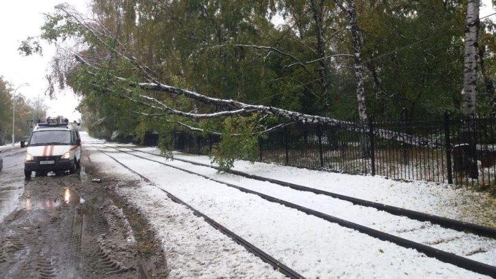 Из-за сильного снегопада в Кемерове встали троллейбусы и трамваи