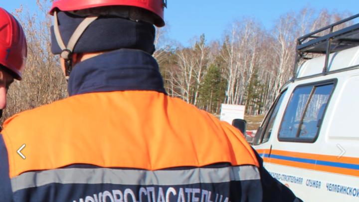 В Челябинской области четверо подростков заблудились ночью в лесу