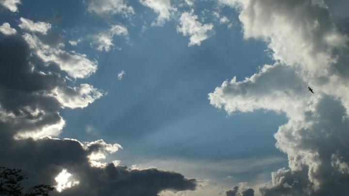 Прогноз погоды в Краснодарском крае на 26-28 ноября: На выходных будет сухо и солнечно