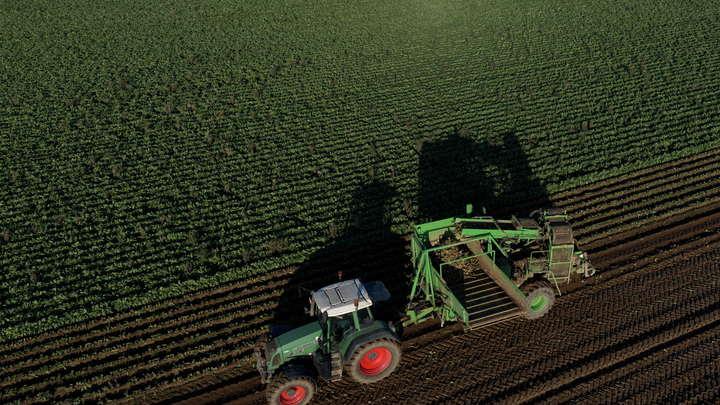 Фермер одним камнем сместил границу между Бельгией и Францией