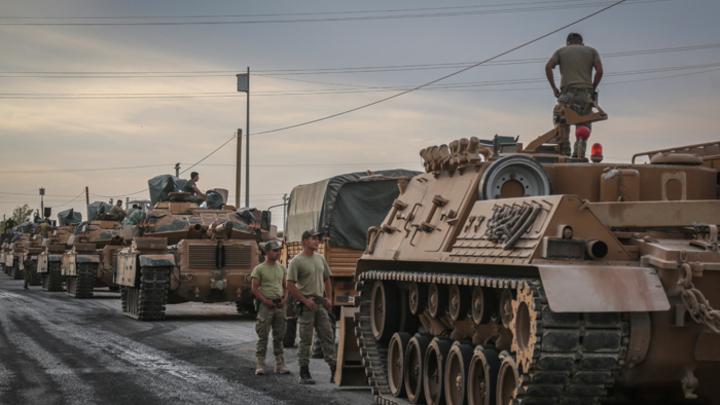 Россия не повелась на блеф Эрдогана и выпустила гусей