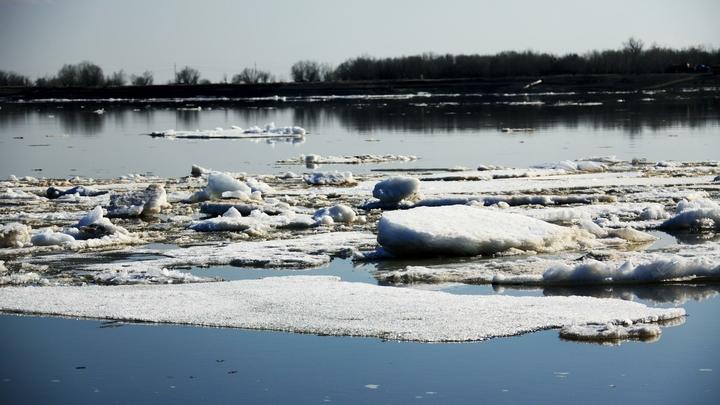 Возможна эвакуация: В Новосибирске повышается уровень воды в реке Тула
