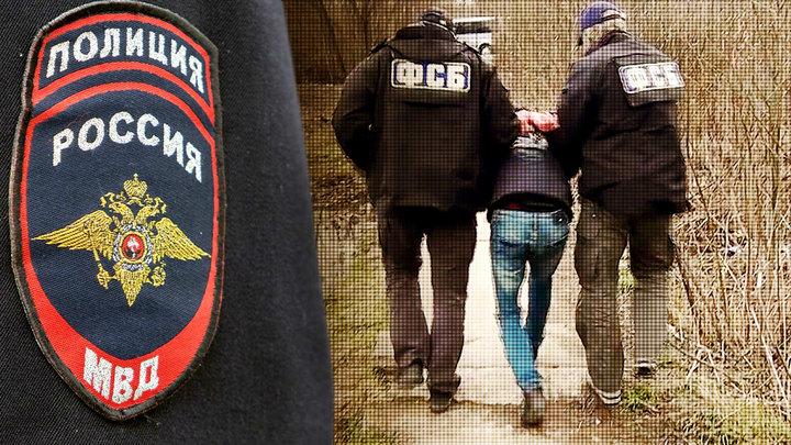 Зачем создаётся русское ФБР