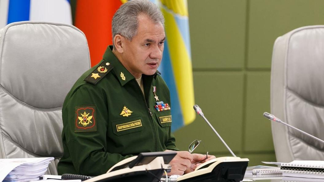 МИД: Лавров иШойгу встретятся соспецпосланником ООН поСирии 21декабря