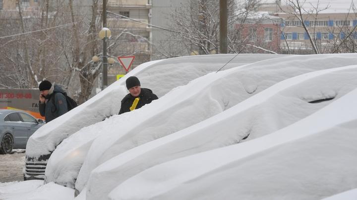 За символическую сумму: Москвичи решили подзаработать на раскопках авто из сугробов
