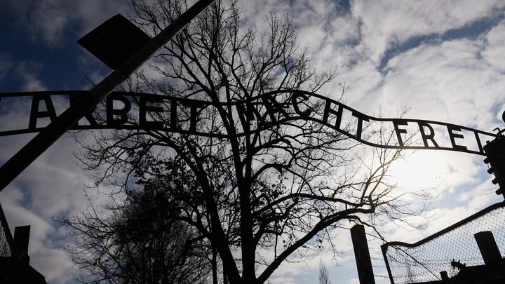 Камер не было, все фото - фейк: Британские СМИ об освобождении Освенцима бойцами Красной армии