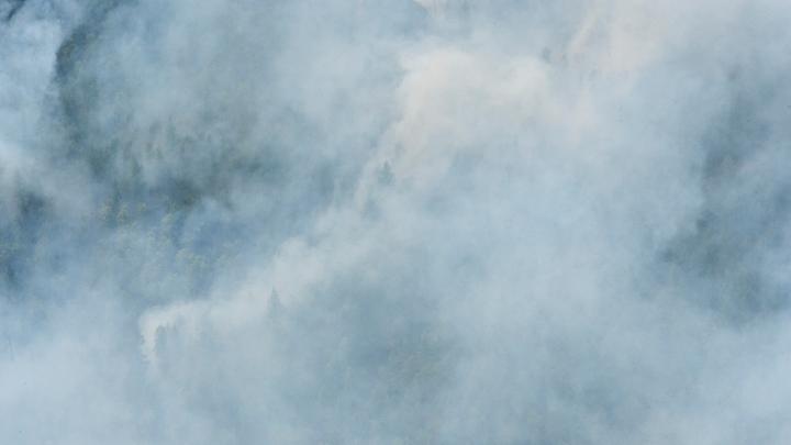 Роспотребнадзор объяснил запах гари в Зауралье