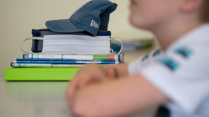 Тюремная схема станет реальностью для школьников в России. Дистант покажется сказкой?