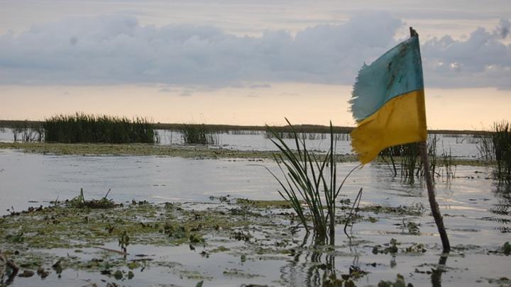 Украинские каратели сознались в ведении войны в Донбассе