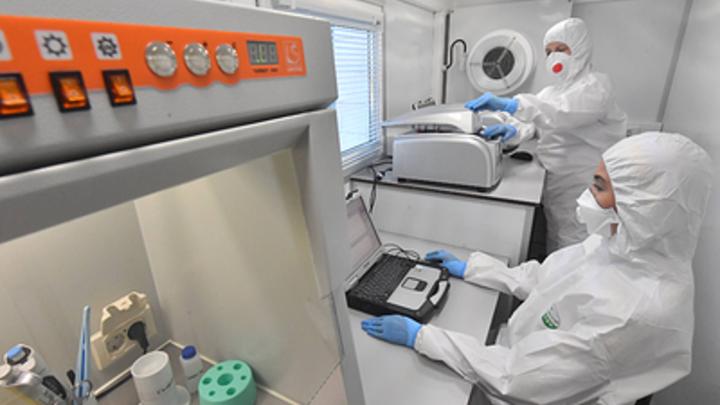 Медики в Курганской области подтвердили 68 новых случаев коронавируса