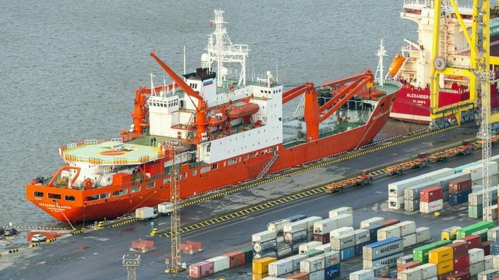 Перенос Большого порта в Усть-Лугу остановили охраняемые заказники. Новое место уже нашли