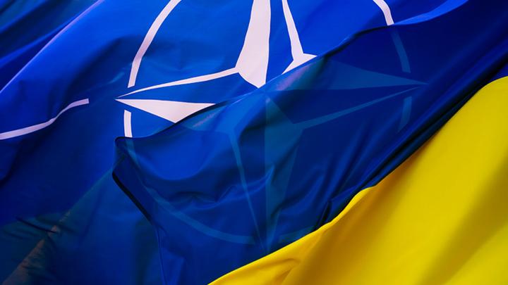 Украинскую конституцию переписали под НАТО