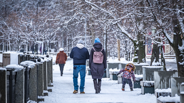 Какая погода ожидается в декабре во Владимирской и Ивановской областях