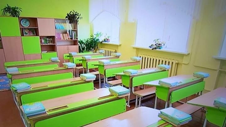 Губернатор Шумков объяснил зауральцам плюсы дистанционного обучения в школах
