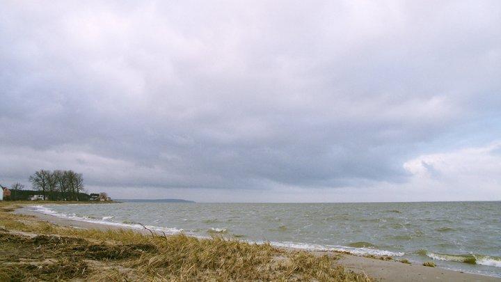 «Роют» воду: СК возбудил уголовное дело после крушения вертолета на Балтике