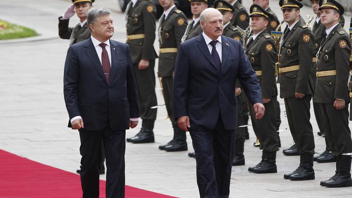 Упавший при Лукашенко в обморок глава Погранслужбы Украины лишился работы