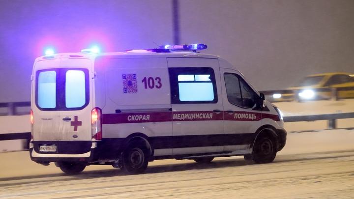 В Челябинской области в буран в скорой умерла женщина