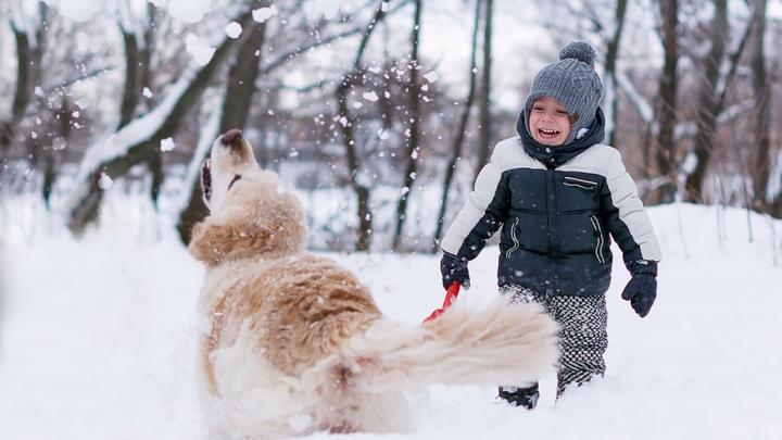 Аномальных морозов не будет: Росгидромет опроверг пугающие прогнозы