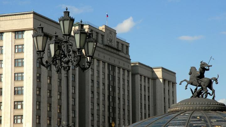 Госдума считает жалобу России в ВТО элементом подготовки встречи Путина и Трампа