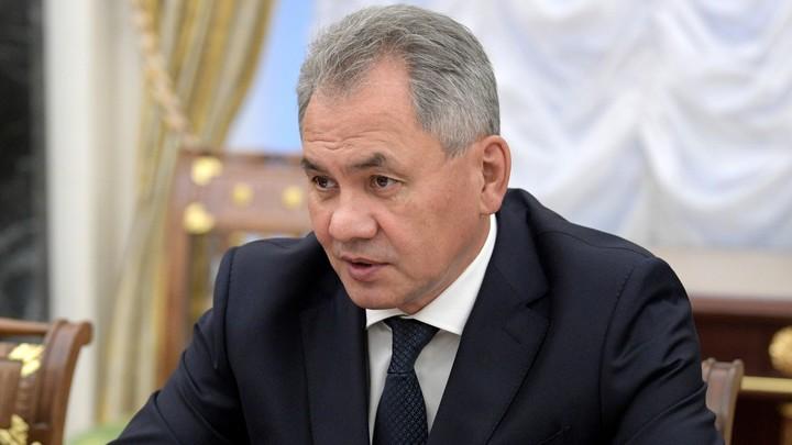 Шойгу раскрыл главный секрет успеха военной операции России в Сирии