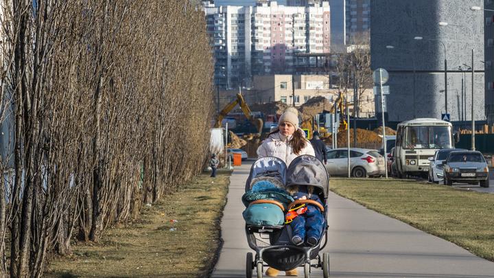 Самый настоящий прорыв: Пронько оценил предложенные Путиным меры поддержки семей