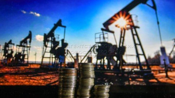Вот вам и Дружба: Белоруссия нашла способ компенсировать недостаток российской нефти