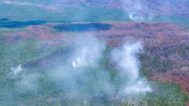 Жара до 43: Россию ждут аномальные температуры - синоптики предупреждают о пожарах