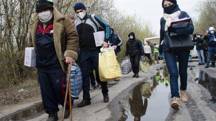 Закончится всё это плохо: Военкор обвинил Киев в страусиной политике геноцида в Донбассе