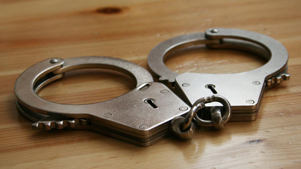 ВПодмосковье задержана подозреваемая вкраже более 48 млн рублей