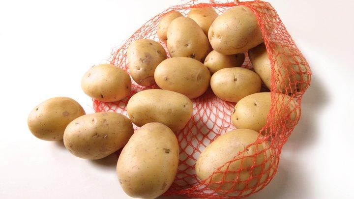 Не бульбой единой: Россия вновь согласилась закупать картошку у Египта