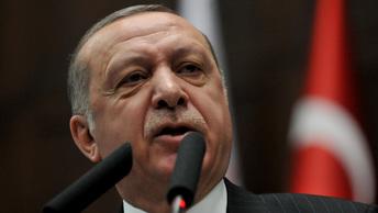 Проблемы Ближнего Востока вылились в трехчасовой разговор Эрдогана с Тиллерсоном