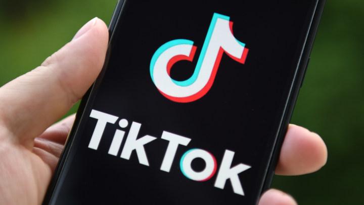 TikTok пообещал спустить с берёзы Лёху из деревни