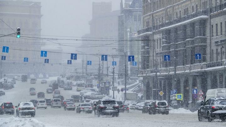 Весне быть: Синоптики рассказали, когда в Москву придет оттепель