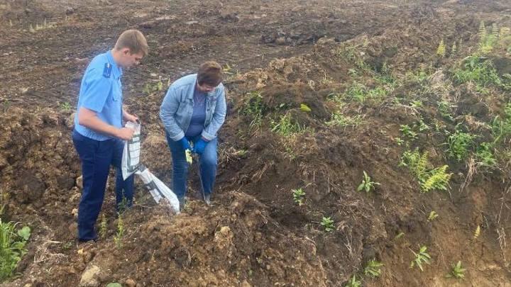 В Кузбассе предприятие безвозвратно испортило плодородную почву