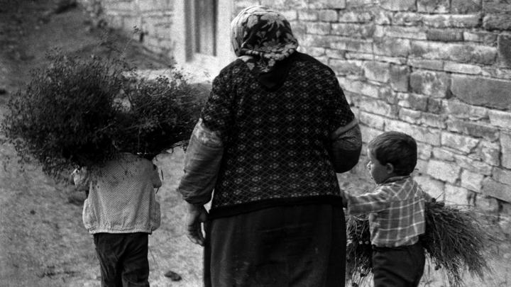 Жительница Средней Азии бросила трех маленьких детей в подвале дома в центре Петербурга